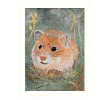 Golden Hamster Art Print