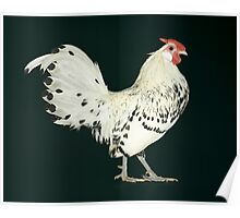 Hamburg Silver Spangled Cock Poster