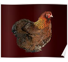 Partridge Cochin Pullet Poster