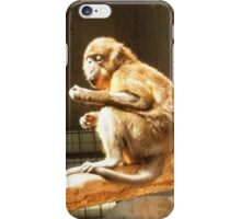 Metroparks Zoo 11 iPhone Case/Skin