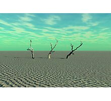 Arid Disaster Photographic Print
