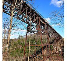 Letchworth State Park IV Photographic Print