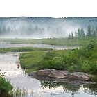 Algonquin Park - Costello Creek by Jim Cumming