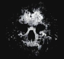 torn skull by tom swihart