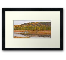 Algonquin Park - Costello Creek Framed Print