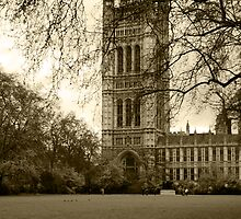 Westminster by woodgag