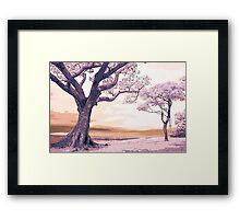 Pink Landscape II Framed Print