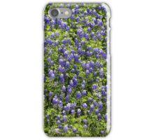 Bluebonnet Field iPhone Case/Skin