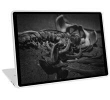 Bones Laptop Skin