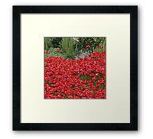 Blood swept Lands and Seas of red #2 Framed Print