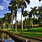 Royal Palms at Roser Park by sailorsedge