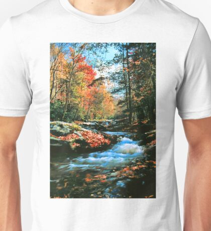 MOUNTAIN STREAM,AUTUMN Unisex T-Shirt