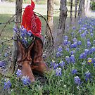 Boots 'n Bluebonnets by EmmaLeigh