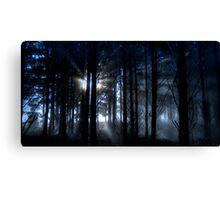 Forest fog. Canvas Print
