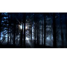 Forest fog. Photographic Print