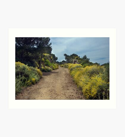 Track to Bateria Cenizas, Costa Calida, Spain Art Print