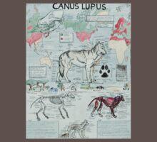 CANUS LUPUS One Piece - Short Sleeve
