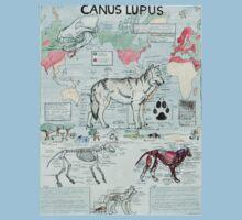 CANUS LUPUS Baby Tee