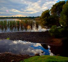 Herdsman lake by Stephen Clarke