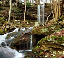 Below Jacoby Falls by Gene Walls