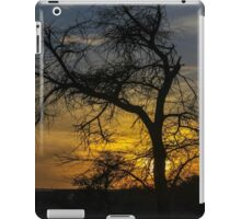 Dry parched tree in a desert landscape at sunset iPad Case/Skin