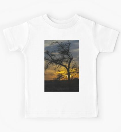 Dry parched tree in a desert landscape at sunset Kids Tee