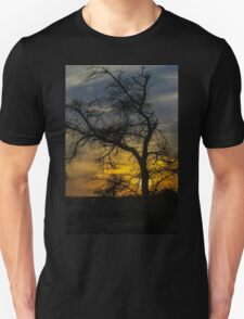 Dry parched tree in a desert landscape at sunset T-Shirt