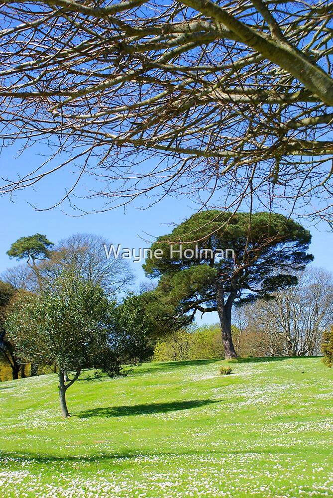 The Earl's Garden by Wayne Holman