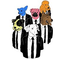Real Reservoir Dogs sticker Photographic Print