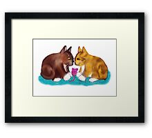 Nose to Nose over the Mouse Toy Framed Print