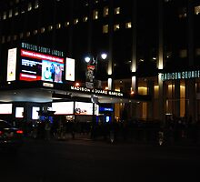 Madison Square Garden At Night NYC by LenaHunt