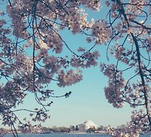 Portrait of Jefferson Memorial in Spring by Kadwell