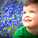Bluebonnet Hill by jujubean