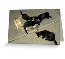 Party Of Five Greeting Card