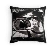 """Narcissus and Shiny Surfaces"" Throw Pillow"