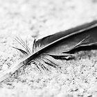 Ceci n'est pas une plume by MissElenaT