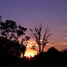 Marong Sunset 2 by judygal