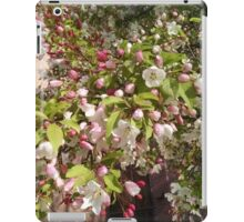 Spring Blossoms #3 iPad Case/Skin