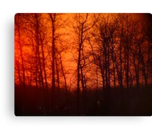 Sunset Behind the Trees Canvas Print