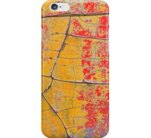 Rustic Colors of Age - Beautiful Grunge in Red and Orange  iPhone Case/Skin