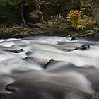 river braan by codaimages