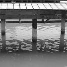 Dock- B&W by Tracy Wazny