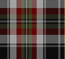 00353 Sligo County, Crest Range Fashion Tartan  by Detnecs2013