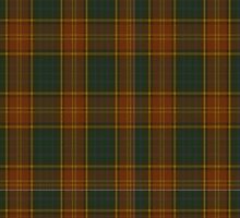 00352 Roscommon County District Tartan  by Detnecs2013