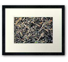 Honey under the microscope Framed Print