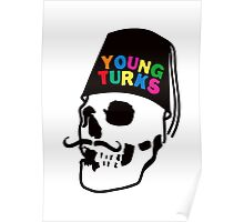 young colors Poster