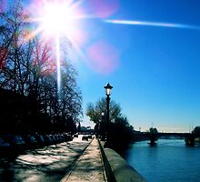 Land[e]scapes - Now is the Winter of our discontent made glorious Summer by this Sun of... Verona by MissElenaT