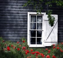 Come By My Window by Carolyn Staut