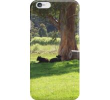 A Cool, Shady Spot iPhone Case/Skin