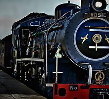 Rosie the Outeniqua Choo-Choo by Deon de Waal